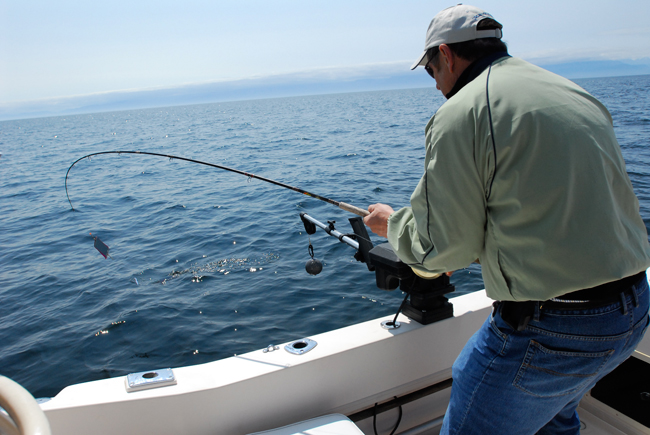Fishing Charters - Adam's Fishing Charters